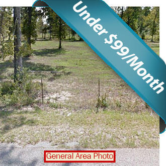 Unrestricted Acre Property in Eastern Texas - Image 1