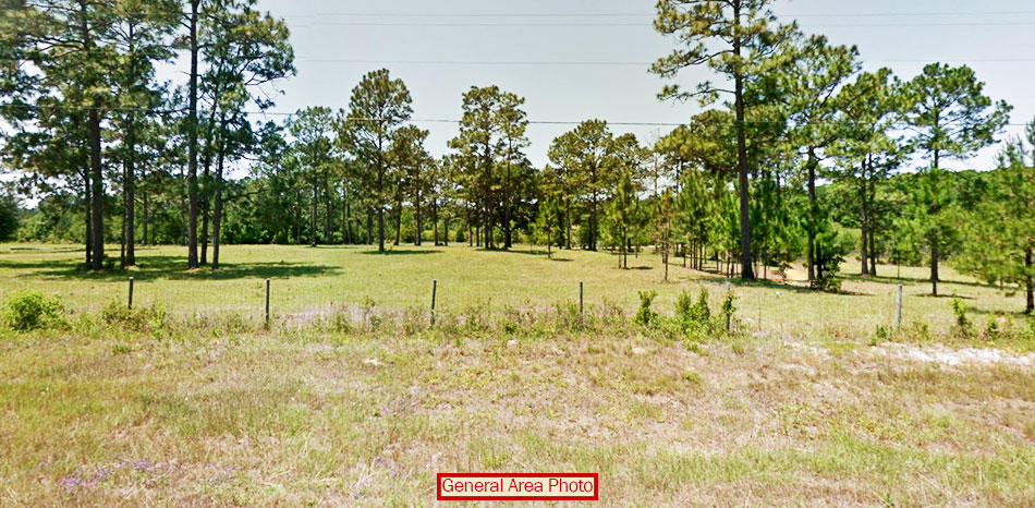 Breathtaking Half Acre North Florida Property - Image 2
