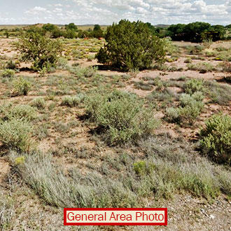One Acre Property Outside of Snowflake - Image 0