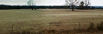 Nearly Quarter Acre Cleared Lot With Amenities Galore