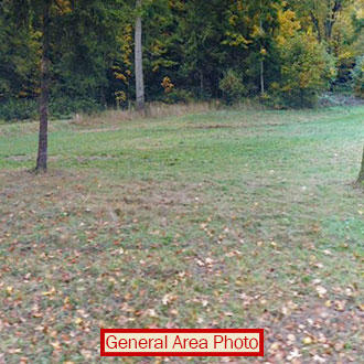 Beautiful Quarter Acre Plot on Anderson Island - Image 1