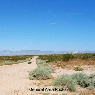 Flat, Open Property About 30 Minutes from California City - Image 1
