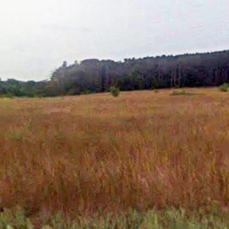Stunning 2 Acres in Friendliest Town in Wisconsin - Image 0