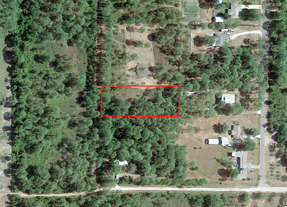 Rare 1 Acre in Orange Blossom Estates - Image 1