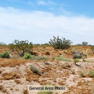 Flat, Open Property About 30 Minutes from California City - Image 3