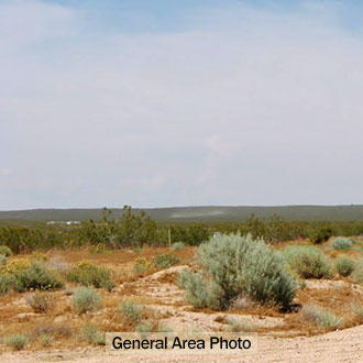 Flat, Open Property About 30 Minutes from California City - Image 4