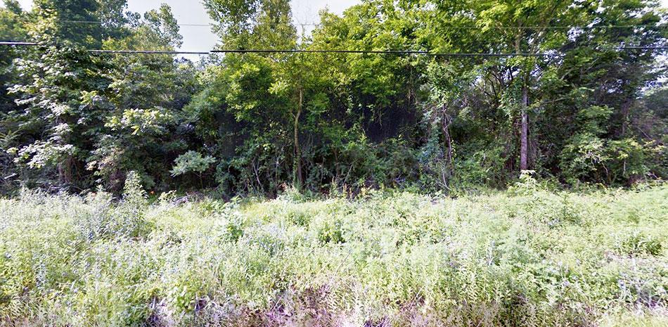 Abundant Beauty Surrounding One Acre Land - Image 3