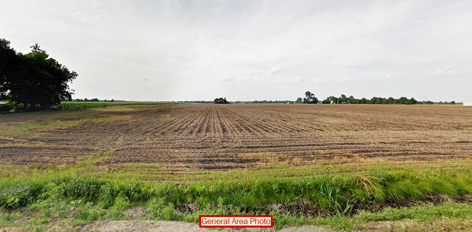 Stunning Half Acre of Fertile Land - Image 2