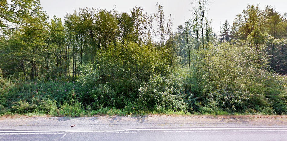 Remarkable Evergreen State Property - Image 4