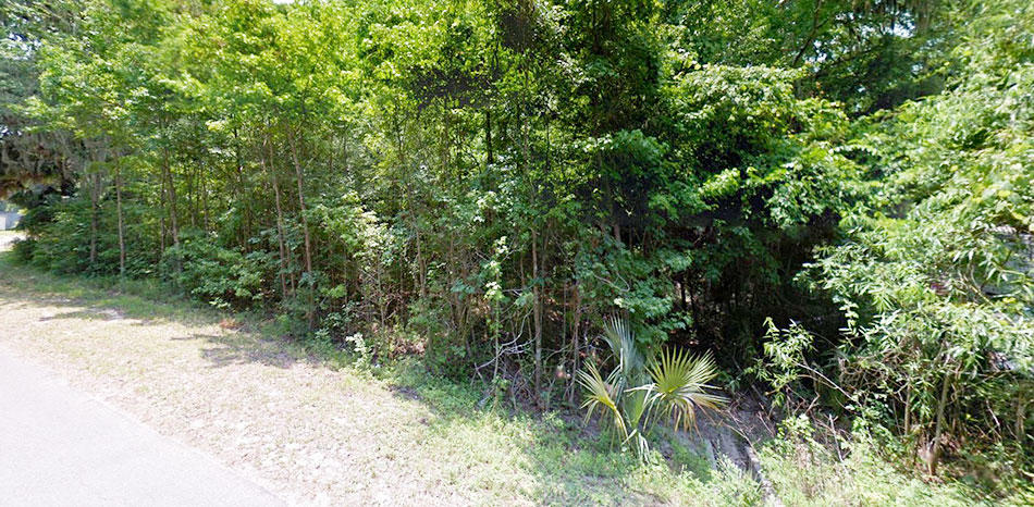 Residential Lot Ready For Your Mobile Home - Image 2