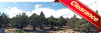 Wonderful Quarter Acre Lot Near Lake Shastina