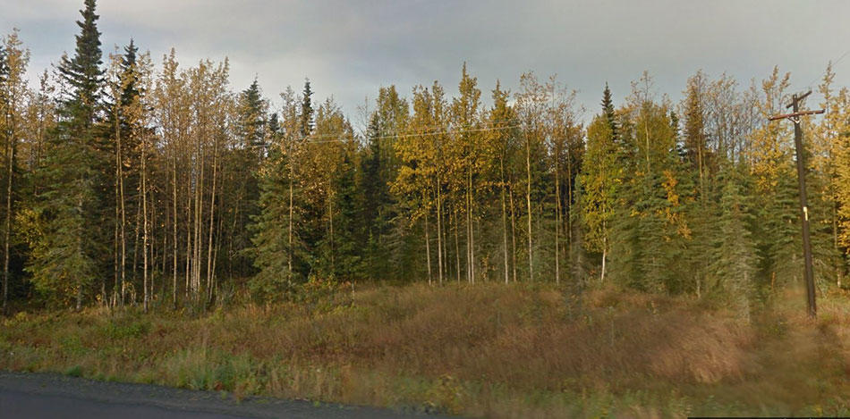 Stunning 1 Acre in Alaskan Wilderness - Image 2