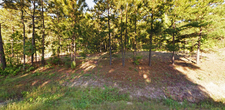 Nearly 2 Acres of Usable Land With Endless Possibilities - Image 4