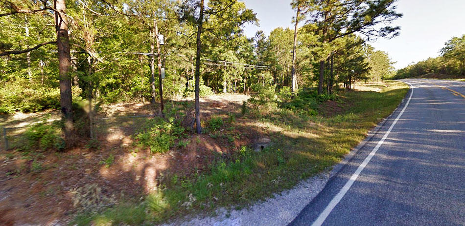 Nearly 2 Acres of Usable Land With Endless Possibilities - Image 5