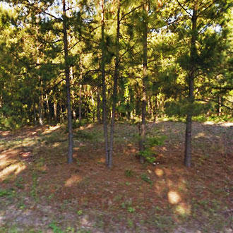 Nearly 2 Acres of Usable Land With Endless Possibilities - Image 1