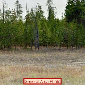 Stunning 20 Acres in Washington State - Image 0