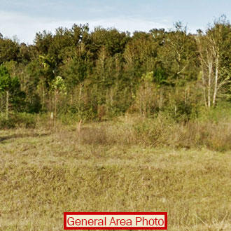 Fabulous Two Acres Near Daytona Beach - Image 0