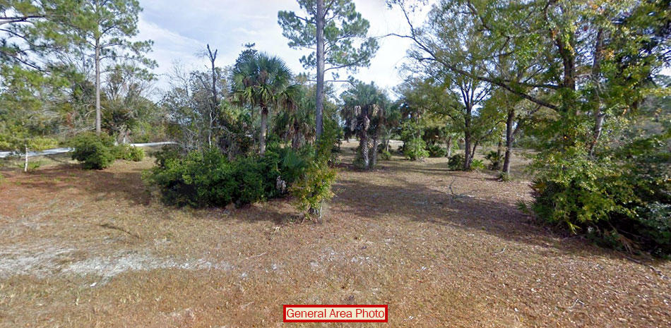 Beautiful Corner Lot on Stunning 1 Acre - Image 2