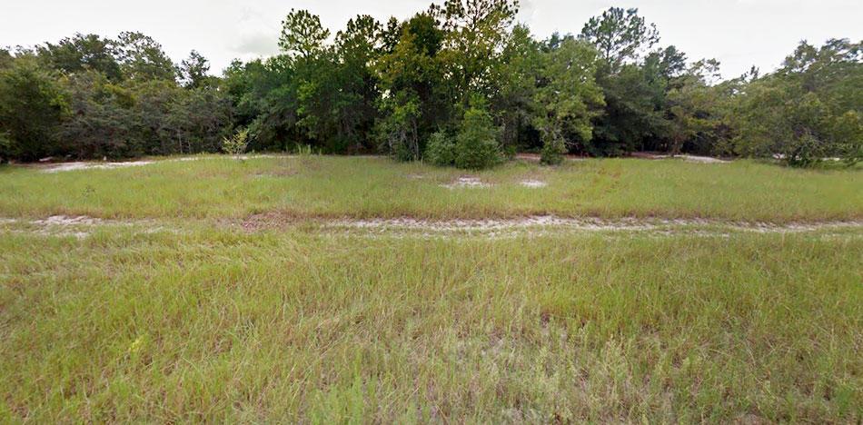 Quiet Homesite Near Lake Weir - Image 2