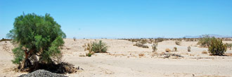 21 Acre Property About 12 Miles Northeast of Calipatria