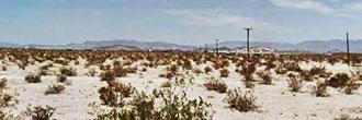 Rural Living on 5 Desert Acres