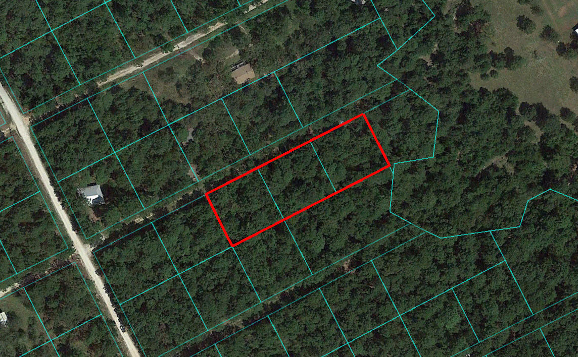 Gorgeous 1 Acre in Prime Texas Location - Image 1