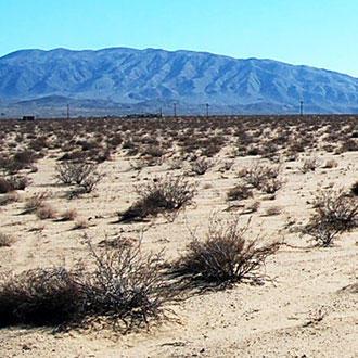 Large California Acreage Near Blythe - Image 1