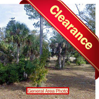 Florida Land Near Beautiful Island Community - Image 1