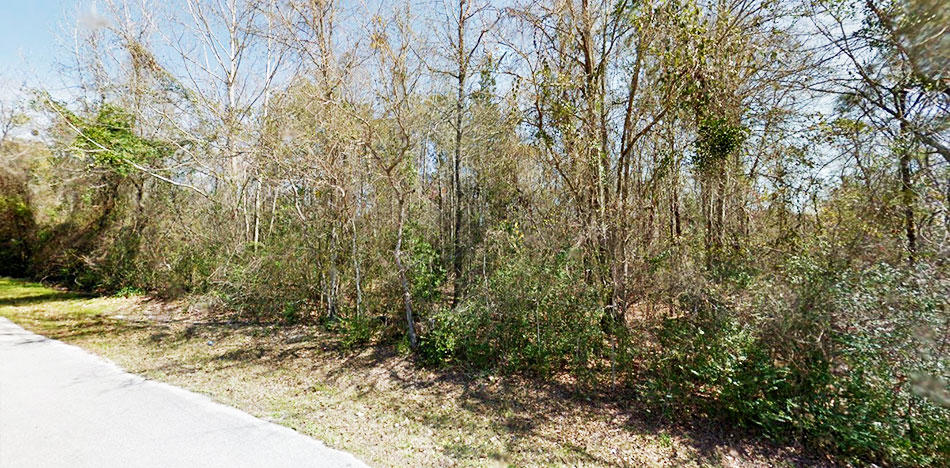 Desirable Corner Lot in Up and Coming Area - Image 5