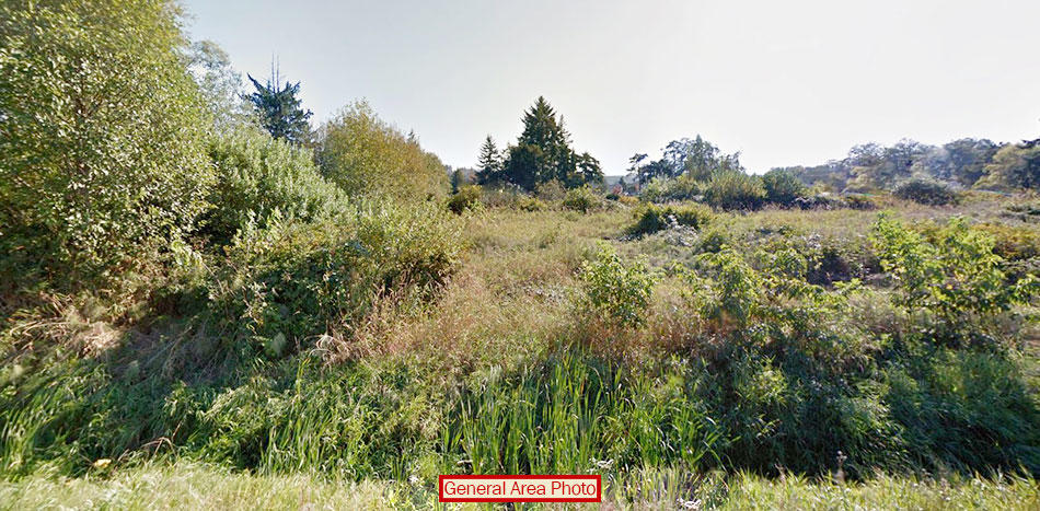 Riverfront Property on Residential 2 Acres - Image 2