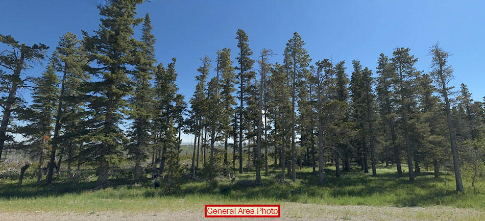 Montana acreage next to Glacier National Park - Image 3