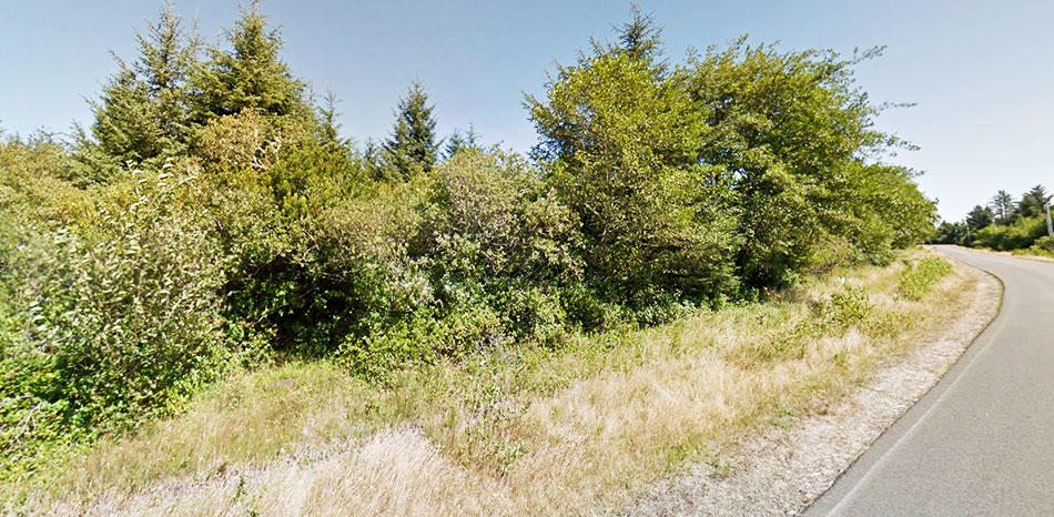 Explore the Potential of this Wooded Land Near North Bay - Image 4
