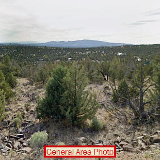 Five Acre Parcel About 17 Miles Southeast of Prineville - Image 0