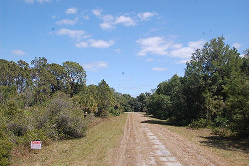 Rich Land Opportunity Near Florida Coast - Image 4