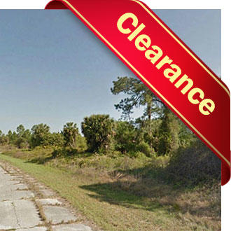Spacious Quarter Acre Florida Parcel - Image 1