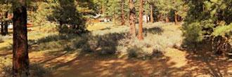 Beautiful Land in Sierra Nevada Region