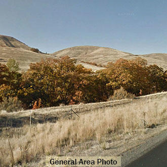 Acreage Near the Mountains and the Columbia River - Image 1