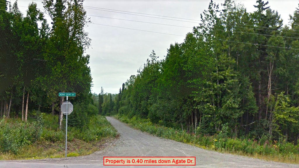 1.17 Acre Property Less than 17 Miles from Kenai - Image 3