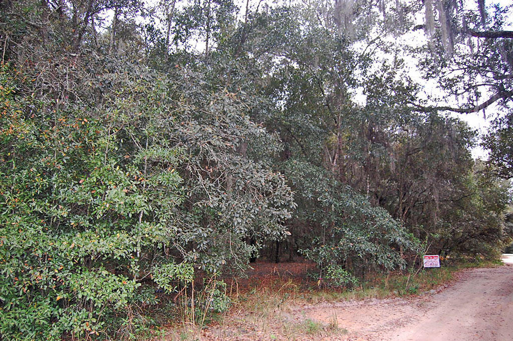 Commercial Lot Located in Residential Neighborhood - Image 3
