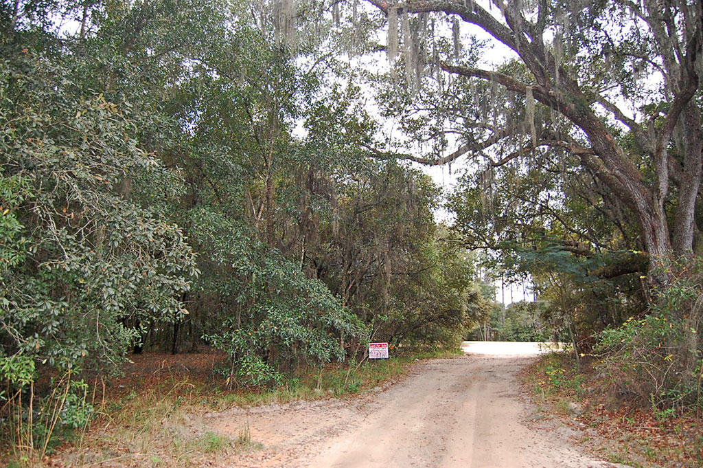 Commercial Lot Located in Residential Neighborhood - Image 4