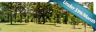Breathtaking Half Acre North Florida Property