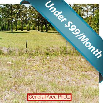 Breathtaking Half Acre North Florida Property - Image 0