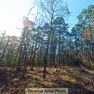 Peaceful living in rural Louisiana - Image 0
