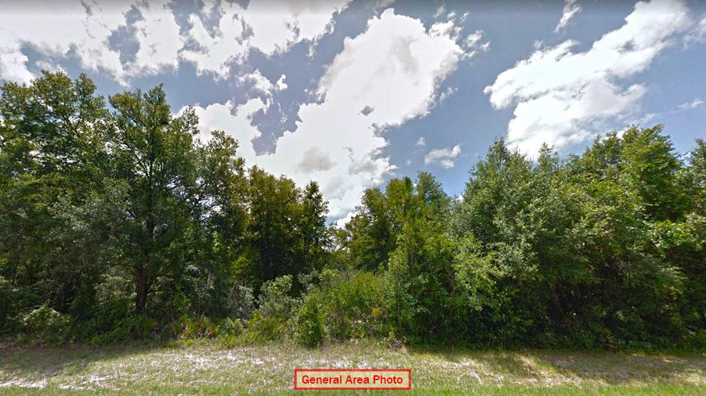 More Than Half Acre Near Florida Coast - Image 0