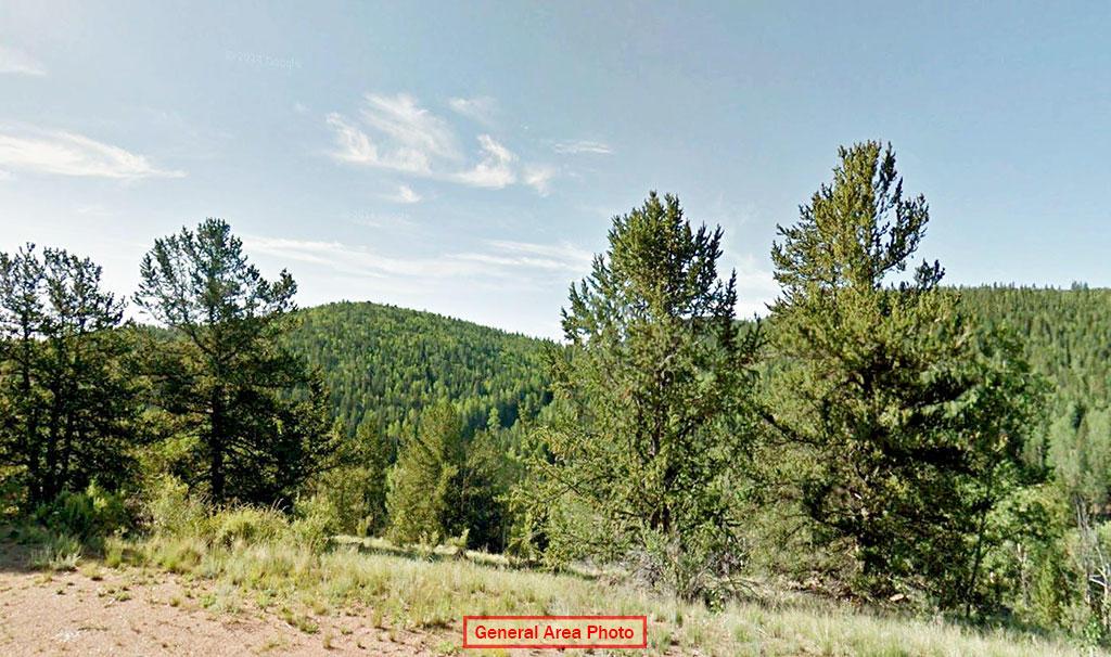 Rugged Mountain Land Near Charming Community - Image 4