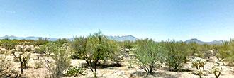 Stunning 1 Acre Parcel Under Desert Stars