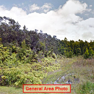Almost Half an Acre in Quiet Hawaii Subdivision - Image 0