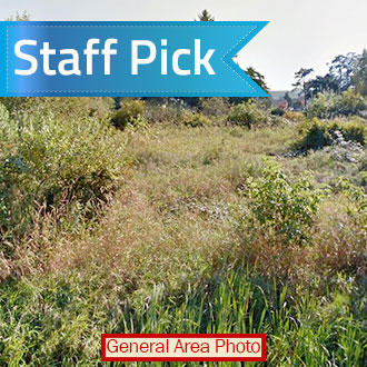 Riverfront Property on Residential 2 Acres - Image 0