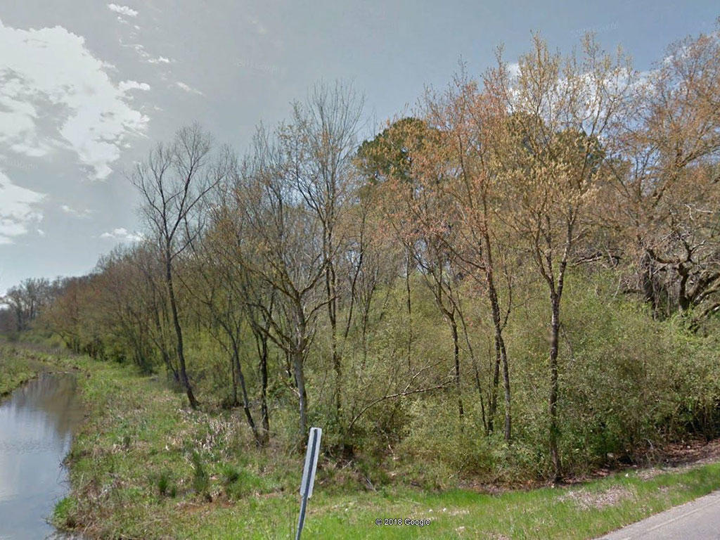 Creekside Property on Near Acre - Image 2