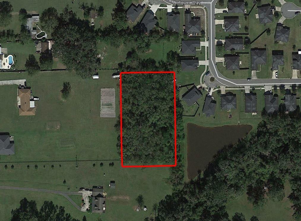 Remarkable 1 Acre Parcel in Jacksonville - Image 1